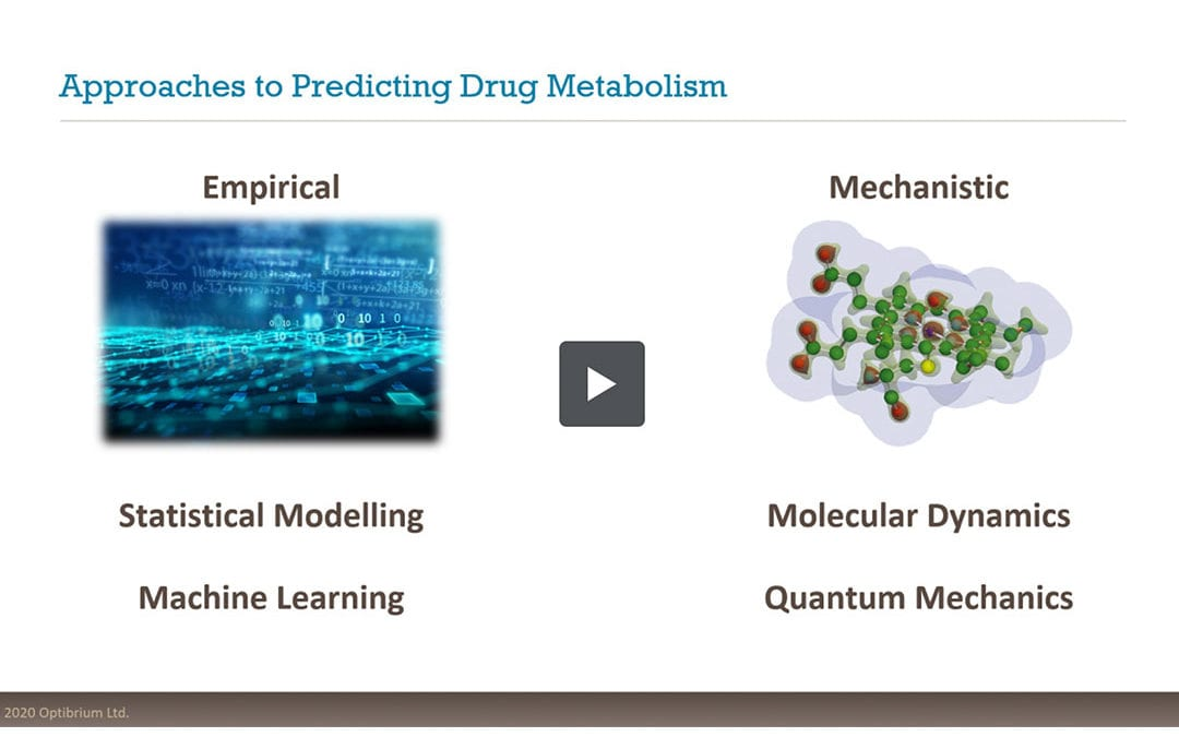 Predicting Reactivity to Drug Metabolism: Beyond P450s – Modelling FMOs and UGTs